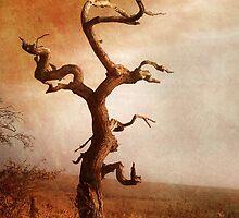 Textured Tree in Gateshead by NortheastOne