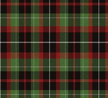 02530 District of Columbia E-fficial Fashion Tartan Fabric Print Iphone Case by Detnecs2013