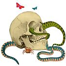Skull And Snakes by Tickleart