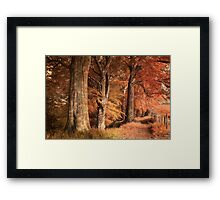 Ousbrough Woods(Textured) Framed Print