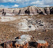 Blue Mesa, Petrified Forest National Park, on Route 66, AZ by swtrekker