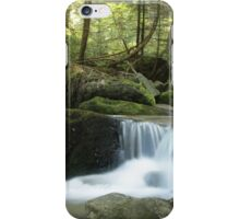 Stream Amongst the Trees iPhone Case/Skin