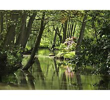 Tranquil river Photographic Print