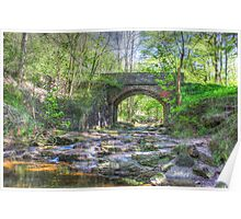 Bridge To Falling Foss Poster