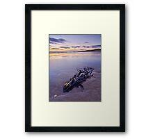 Seaweed Sunset Framed Print