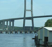 Suspension Bridge by csyl818