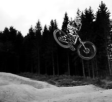 Dan Coulson # 2, Forest of Dean by DavePrice