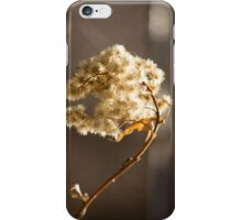 Dry Flower iPhone Case/Skin