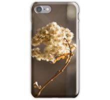 Dry Flower iPhone Case/Skin