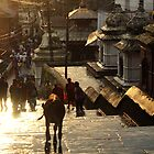 Pashupatinath Steps by Jamie Mitchell