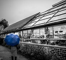 blue brolly by darren lynskey