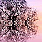 Angels tree by shalisa
