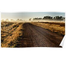 Early Morning Wandering - Dunedoo NSW Australia Poster