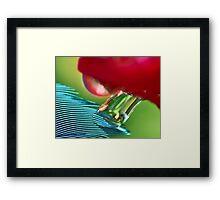 Stretch Light Framed Print
