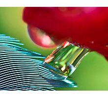 Stretch Light Photographic Print