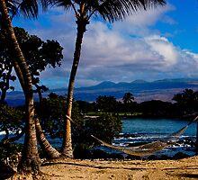 Hawaii Ocean View  by zannadu