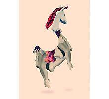 Horse Power Photographic Print