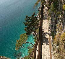Italy - A long walk on the island of Capri by Susanne Finke