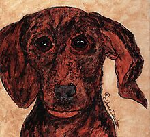 Dachshund Portrait by ClaireDecker