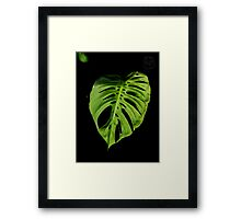 ©GS Out The Shadows Framed Print