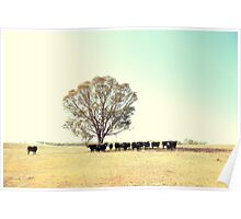 A Cow, A Tree and Some More Cows  Poster