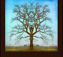 Mirror Tree by DigitalCrafts