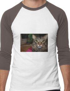 Cute Christmas Cat Men's Baseball ¾ T-Shirt
