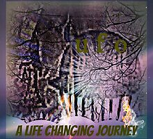 UFO a life changing journey by DMEIERS