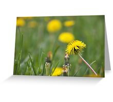 Bright sparks Greeting Card