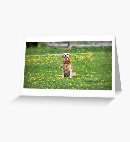 Dandy Greeting Card