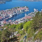 Bergen - Looking Down  by John Thurgood