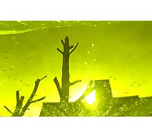 City After Rain (yellow-green) Photographic Print