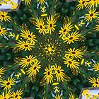 Black eyed Susan by Tori Snow