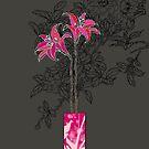 The Vase by Rishani Sittampalam