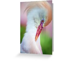 Pretty in Pink.. Greeting Card
