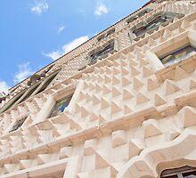 casa dos bicos by terezadelpilar~ art & architecture