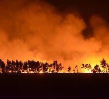 Burning Field... by ShootingSardar