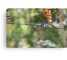 Barb Wire... Canvas Print
