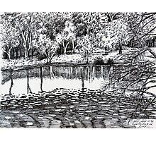 'BASS LAKE, BLOWING ROCK, NC'  Photographic Print