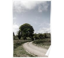 winding dry dirt road on Irish farm Poster