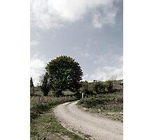 winding dry dirt road on Irish farm Photographic Print