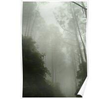 Joe Mortelliti Gallery - Black Spur, gateway to the Mystic Mountains, Victoria, Australia. Poster