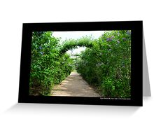 Lilac Arches At Planting Fields Arboretum State Historic Park - Upper Brookville, New York Greeting Card