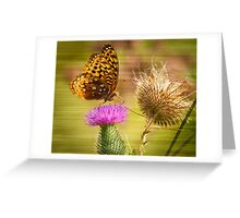 Fritillary On Thistle 2013-1 Greeting Card