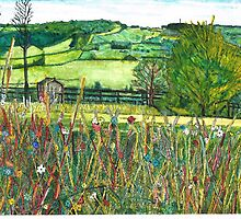 Georginas view to the Cotswold escarpment. by doatley