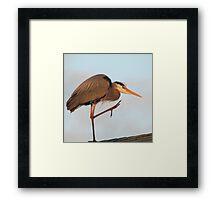 Heron practicing Yoga Framed Print
