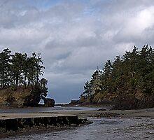 """""""Salt Creek Beach"""" by Lynn Bawden"""