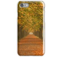 Autumnal Trees iPhone Case/Skin