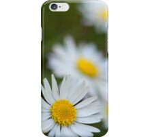 Camomiles iPhone Case/Skin