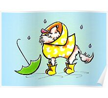 Longhair Chihuahua Fun with Raindrops Off-Leash Art™ Poster